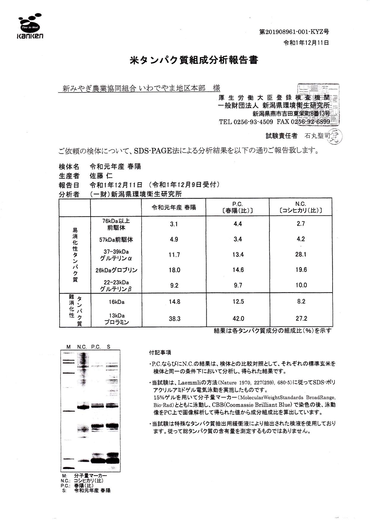 米タンパク質組成分析報告書1